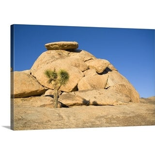 Premium Thick-Wrap Canvas entitled Joshua Tree In Front Of Rock