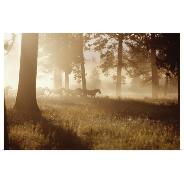 """""""Horses running in forest, early morning mist, side view"""" Poster Print"""