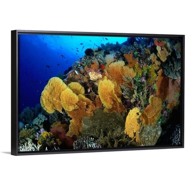 dd718186264a Shop Coral Garden with Sea Fans at Flinders Reef, Coral Sea - Multi ...