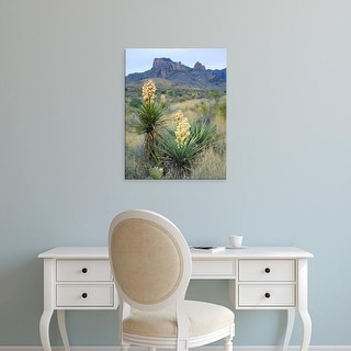 Easy Art Prints Scott T. Smith's 'Spanish Plant In Chisos Mountains' Premium Canvas Art