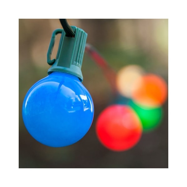 Wintergreen Lighting 70897 25 Bulb 25 Foot Long Incandescent Decorative Holiday String Lights with Green Wire