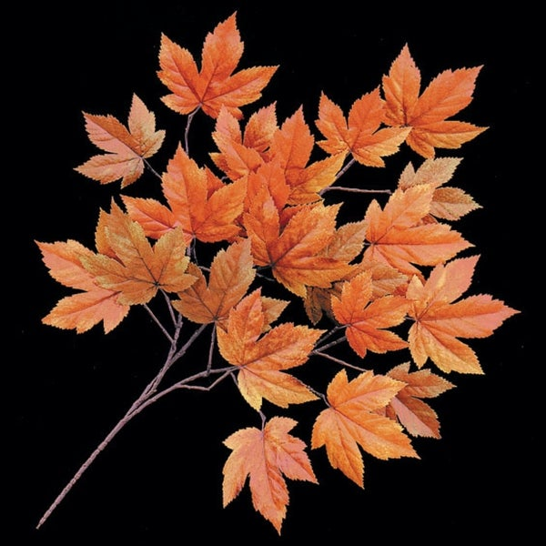 Autograph Foliages PR-8982 29 in. Fr Sycamore Branch