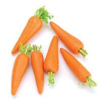Carrots 6/Pkg - Timeless Miniatures