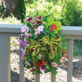 Wildflower Shady Garden with Vertical Growing Bag