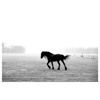 """""""Black horse in a field"""" Poster Print"""