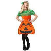 Pretty Pumpkin Girls Costume
