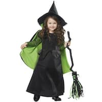 California Costumes Wicked Witch of Oz Toddler Costume - Black/Green
