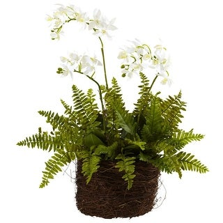 Nearly Natural Mini Phalaenopsis & Fern with Bridsnest Planter
