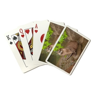 River Otter on Shore - Lantern Press Photography (Playing Card Deck - 52 Card Poker Size with Jokers)