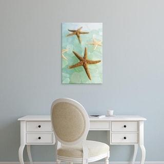 Easy Art Prints Alan Blaustein's 'Crystal Cove #30' Premium Canvas Art