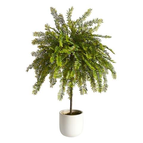 2' Northern Californian Cedar Canopy Artificial Tree in Decorative Planter