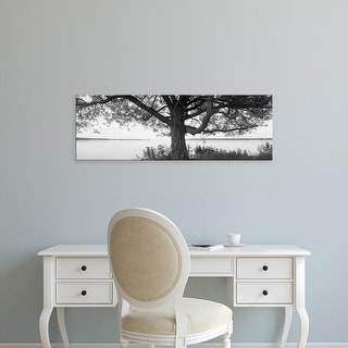 Easy Art Prints Panoramic Images's 'Tree at the lakeside, Wisconsin, USA' Premium Canvas Art