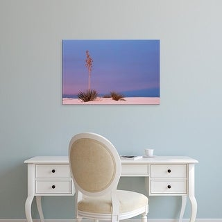 Easy Art Prints Dee Ann Pederson's 'White Sands' Premium Canvas Art