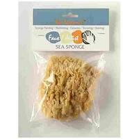 "Acme 4045 Seawool Sponge Natural  4"" - 5"" Polybag"