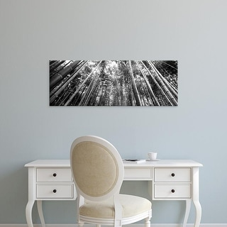 Easy Art Prints Panoramic Image 'Bamboo trees, Arashiyama, Kyoto Prefecture, Kinki Region, Honshu, Japan' Canvas Art
