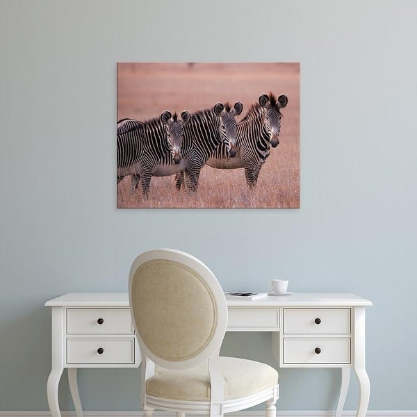 Easy Art Prints Dee Ann Pederson's 'African Zebra' Premium Canvas Art