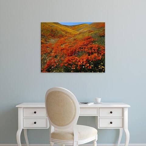 Easy Art Prints Scott T. Smith's 'Antelope Valley Poppies' Premium Canvas Art
