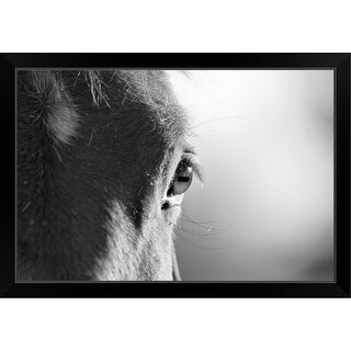 "Link to ""Horses face in black and white, with focus on eye."" Black Framed Print Similar Items in Art Prints"