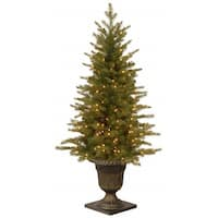 4' Pre-lit Potted Nordic Spruce Entrance Artificial Christmas Tree – Clear Lights - green