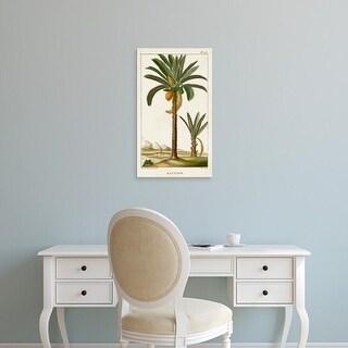 Easy Art Prints Turpin's 'Turpin Exotic Palms IV' Premium Canvas Art