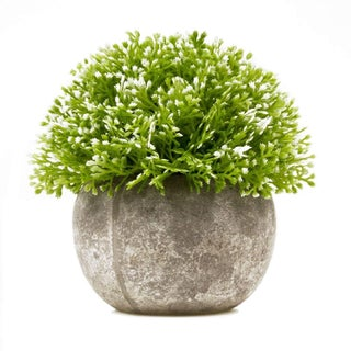 SimLife Mini Plastic Lifelike Artificial Plants Fake Green Grass Flower with Pots For Home Décor (White)