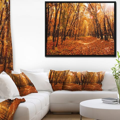 Designart 'Yellow Falling Leaves in Forest' Landscape Photo Framed Canvas Art Print