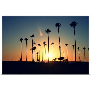 """""""Silhouette of palm trees at sunset."""" Poster Print"""