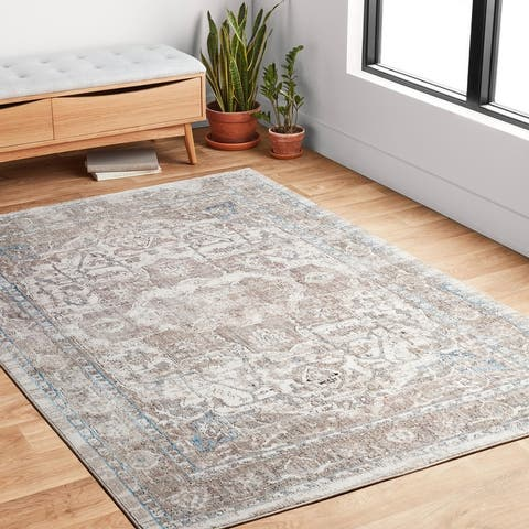 Alexander Home Adrian Distressed Medallion Traditional Area Rug