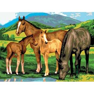 """Horse & Foals - Junior Large Paint By Number Kit 15.25""""X11.25"""""""