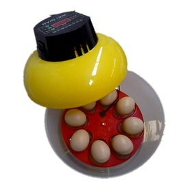 Mini Automatic Incubator 8 eggs Duck Goose Bird Incubator Family hatch tool 220V