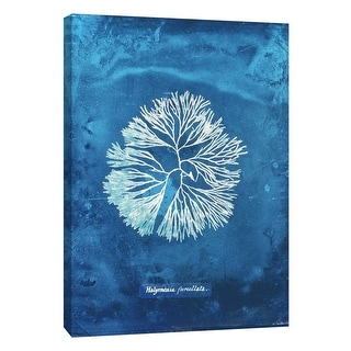"""PTM Images 9-105775  PTM Canvas Collection 10"""" x 8"""" - """"Natural Forms Blue 6"""" Giclee Seaweed Art Print on Canvas"""