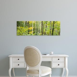 Easy Art Prints Panoramic Images's 'Ontario Canada' Premium Canvas Art