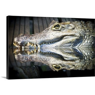 """""""Reflection of a crocodile in water"""" Canvas Wall Art"""