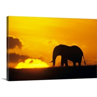 """""""African elephant (Loxodonta africana) silhouetted at dawn, Kenya, Africa"""" Canvas Wall Art"""