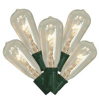 10 Transparent Clear Edison Style Glass Christmas Lights - 9 ft Green Wire