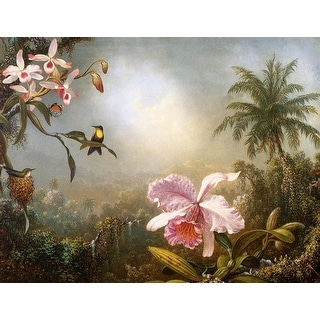 Easy Art Prints Martin Johnson Heade's 'Orchids Nesting Hummingbirds and a Butterfly' Premium Canvas Art