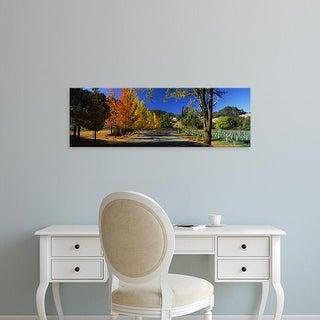 Easy Art Prints Panoramic Image 'Liquidambar trees in autumn, Healdsburg, Sonoma County, California, USA' Canvas Art