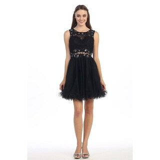 Short Lace & Tulle Fit & Flare Illusion Dress