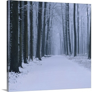 """""""Forest in winter"""" Canvas Wall Art"""
