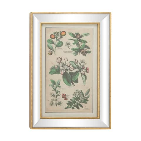 "Large Vintage Style Plant Illustrations Textile in Mirror and Gold Rectangular Frame 19.5"" x 28.5"""
