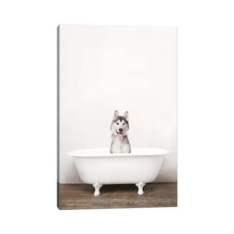 "iCanvas ""Husky Dog In A Vintage Bathtub"" by Amy Peterson Canvas Print"