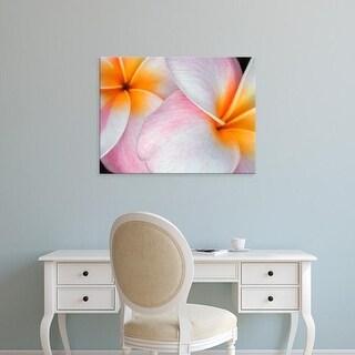 Easy Art Prints Jim Christensen's 'Flowers I' Premium Canvas Art