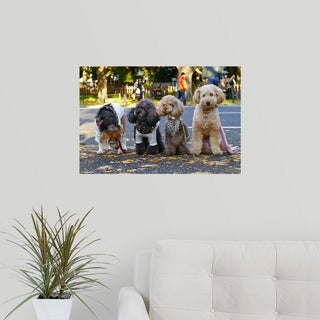 Poster Print entitled Small dogs at a park (5 options available)