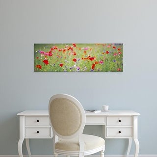 Easy Art Prints Panoramic Images's 'Flowers in field' Premium Canvas Art