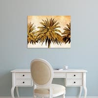 Easy Art Prints Skip Nall's 'Palms on Brown III' Premium Canvas Art