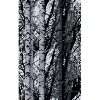 Brewster 334-0028 Birch Forest Premium Window Film - n/a