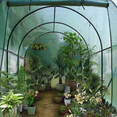 Heavy Duty Greenhouse Plant Gardening Dome Greenhouse Tent 12FT/15FT