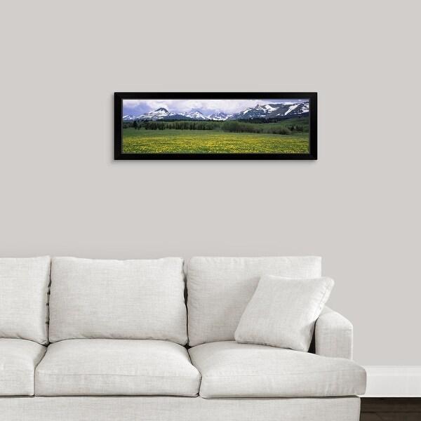 """Wildflowers in a field, East Glacier Park, US Glacier National Park, Montana"" Black Framed Print"