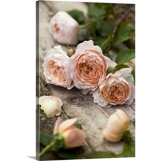 """Ambridge Rose"" Canvas Wall Art"