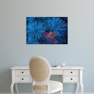 Easy Art Prints Claudia Adams's 'Frosty Maple Seedling' Premium Canvas Art